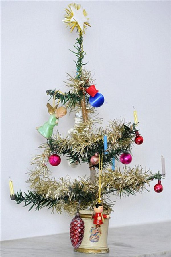 124 letno božično drevesce