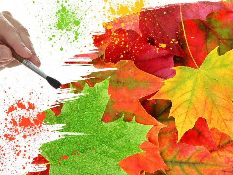 Barvita jesen