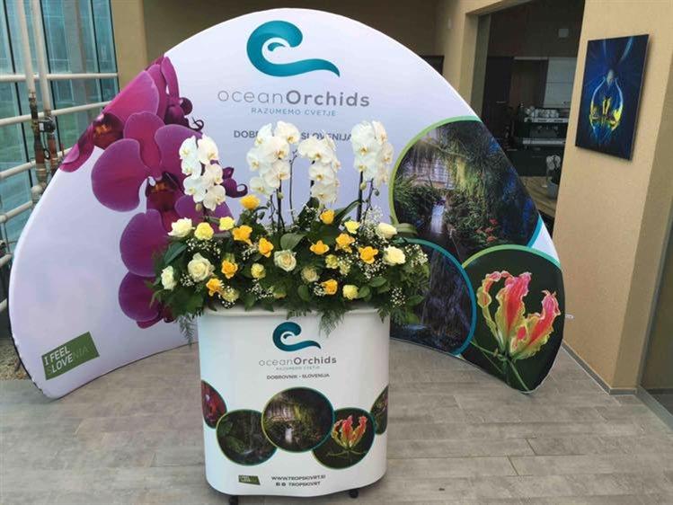 Foto: Ocean Orchids FB