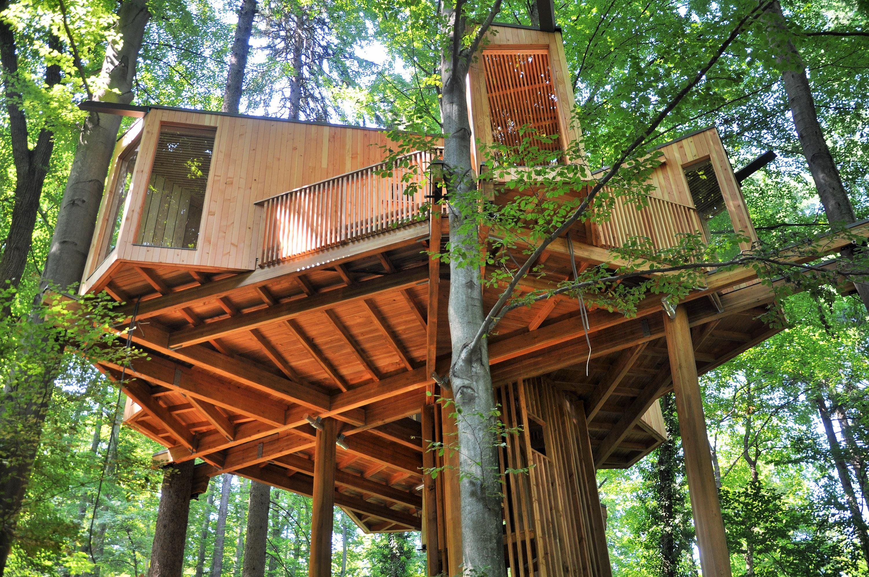 Drevesna hiša