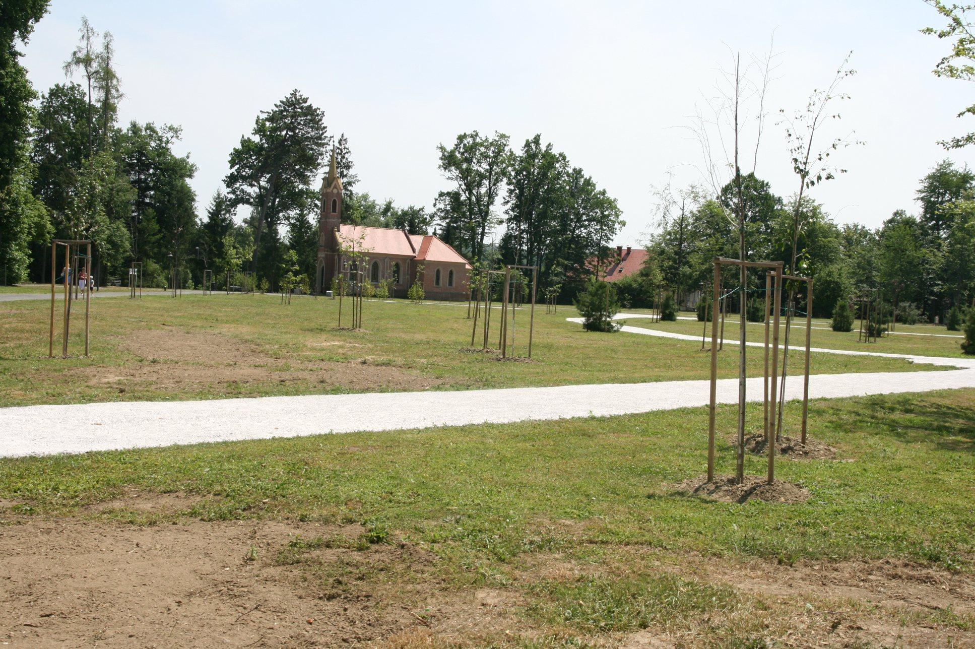 Radenski park krasijo nova drevesa.