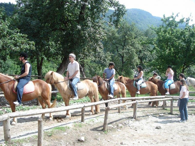 Timbilding vključuje tudi jahanje konjev.
