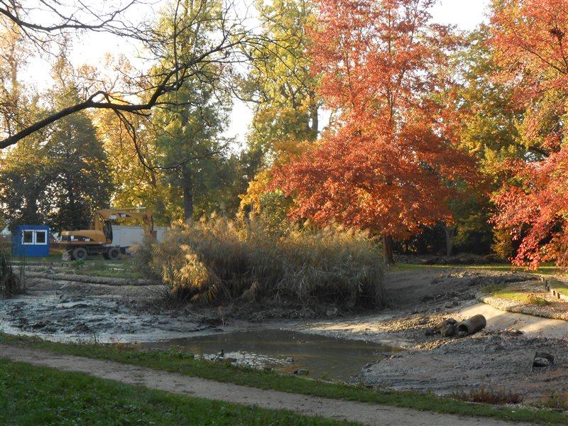Soboški ribnik v mestnem parku bo kmalu dobil svežo podobo