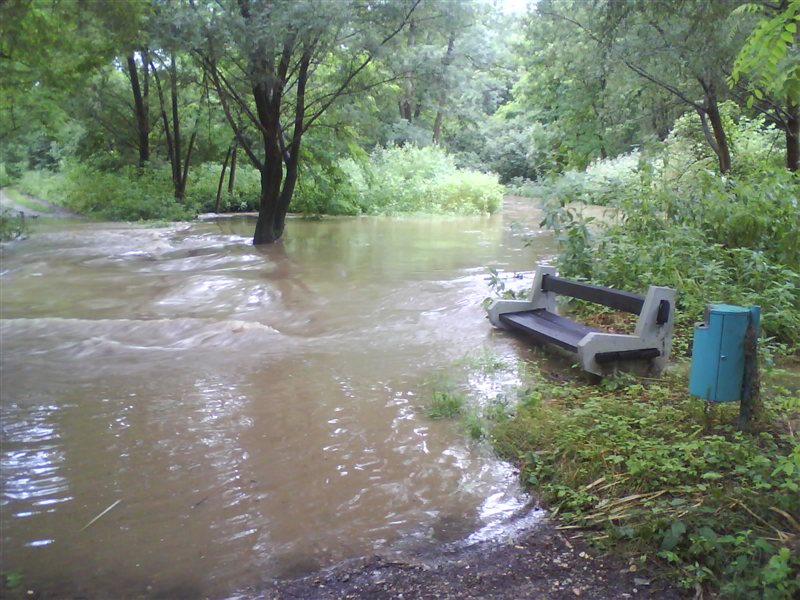 Mura je poplavila nekatere poti znotraj poplavnih nasipov