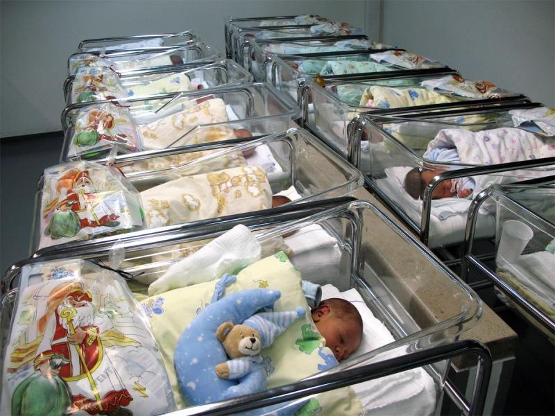 Novorojenčki