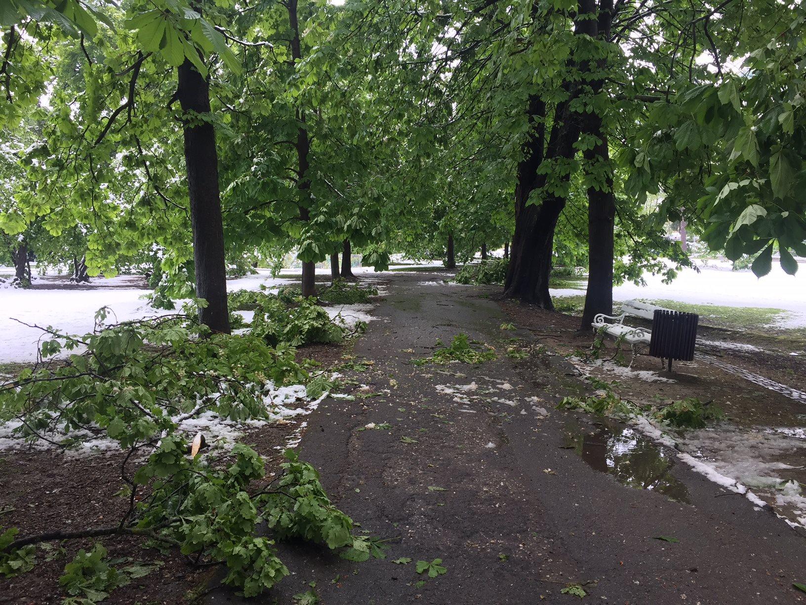 Mariborski mestni parki so zaradi nevarnosti za sprehajalce zaprti.