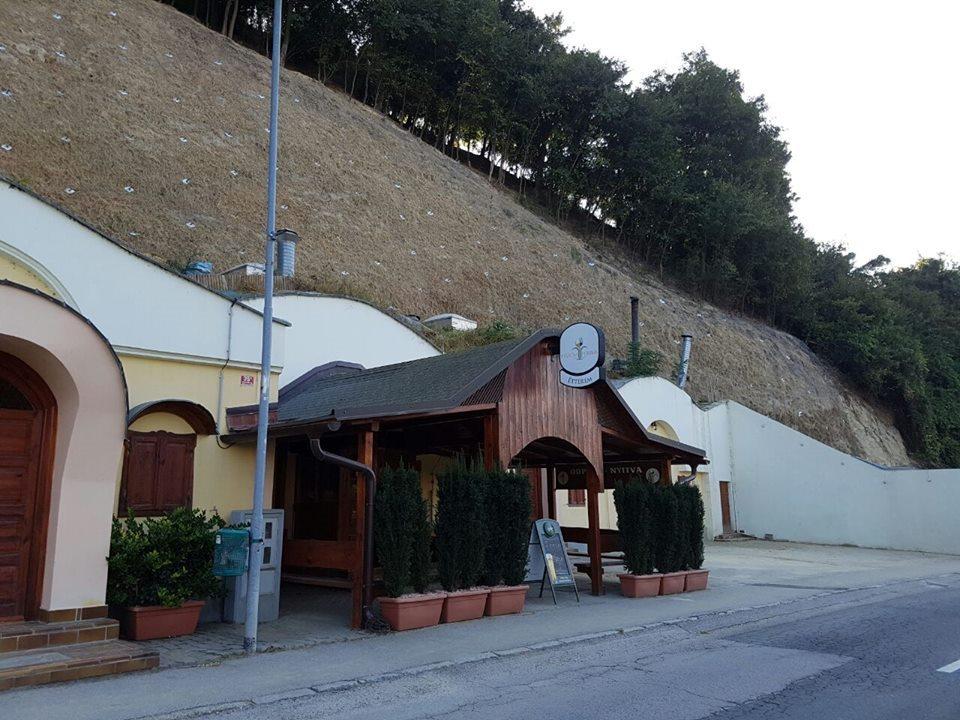 Sanacija pobočja nad Kranjčevo ulico je zaključena; foto: FB