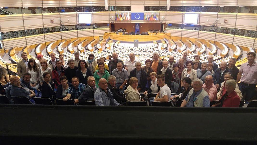 Artiški sadjarji v evropskem parlamentu