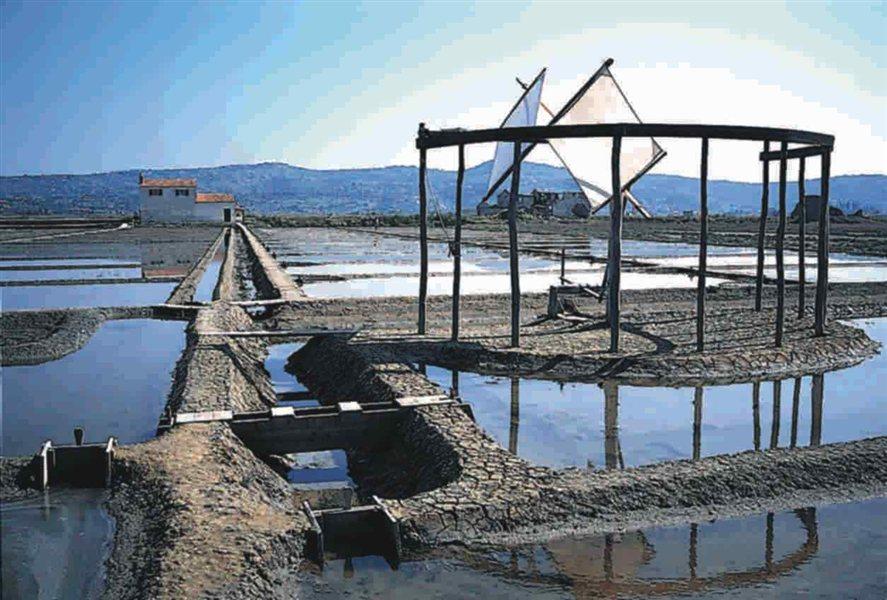 Na koprski policijski upravi so potrdili, da izvajajo več hišnih preiskav na območju Kopra in Nove Gorice. Prostost pa so odvzeli trem osebam.