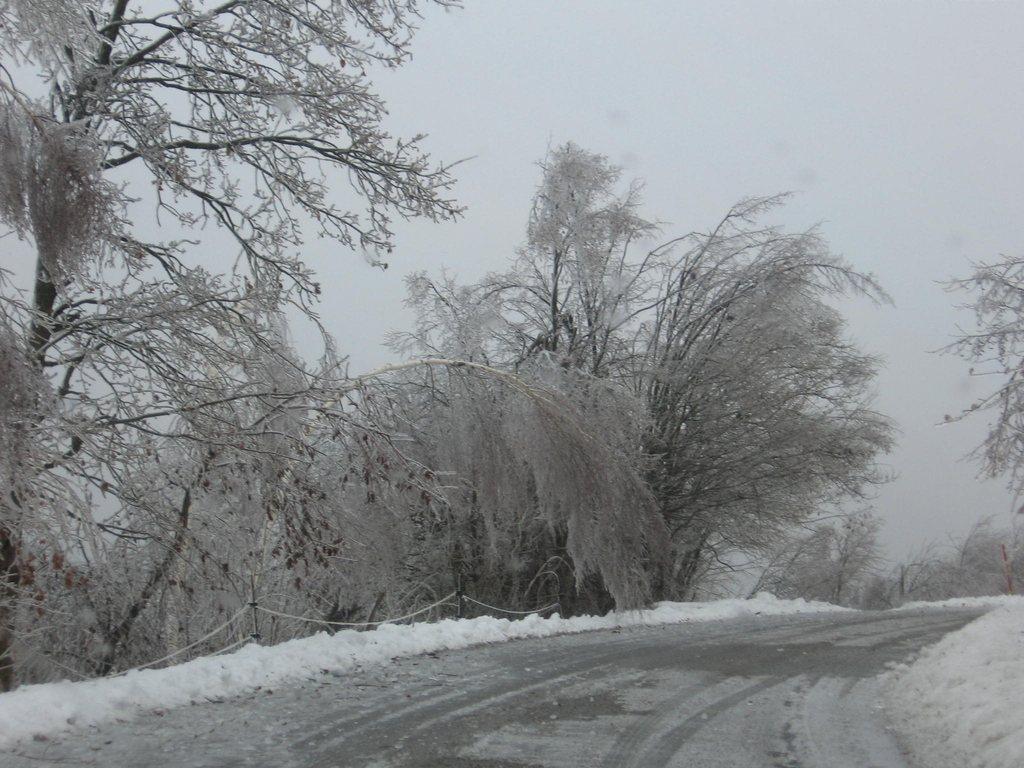 Odlomljene veje so ležale tudi na cestah in ovirale promet