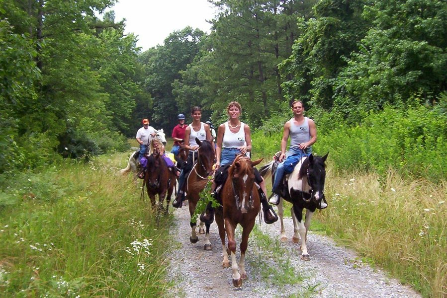 Na pomoč so prišli tudi konjeniki